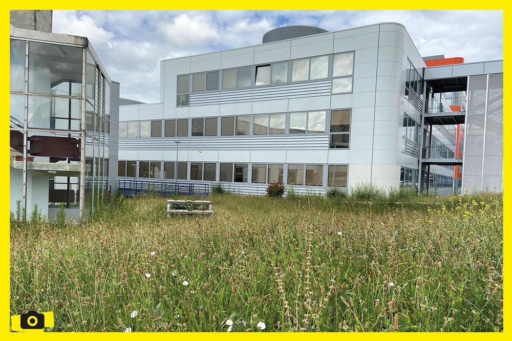 Campus PdA : la nature reprend ses droits