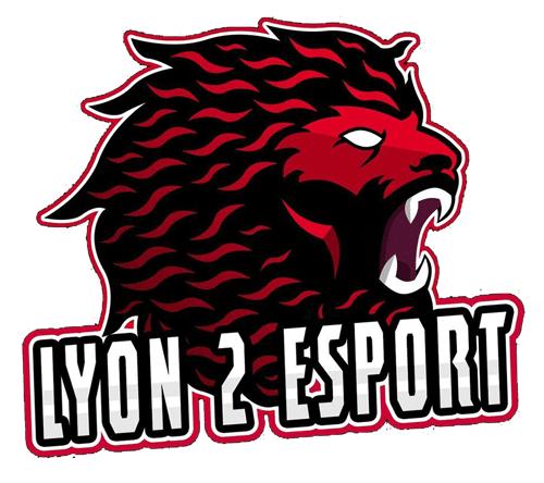Association Lyon 2 E-Sport